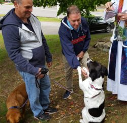 Blessing of the Animals – St  Paul's on the Green, Norwalk